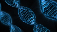 Annotating Genomes - DNA Image